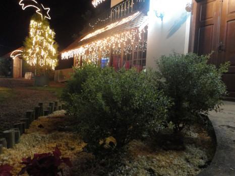 Pra quem perdeu, resta visitar o Sítio do Papai Noel nos outros dois dias da festa, ou aguardar até 2012!