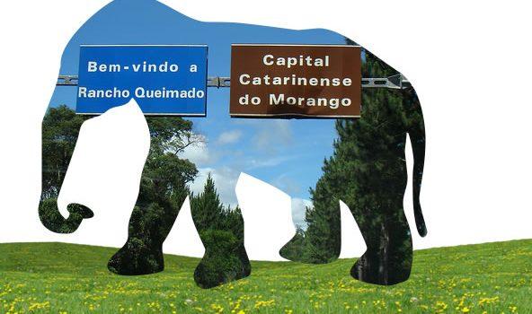 Rancho Queimado: a arte de esconder elefantes
